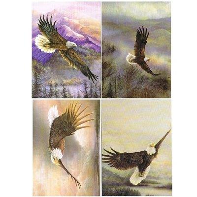 Eagles Wings - Verjaardags Kaarten (set4)