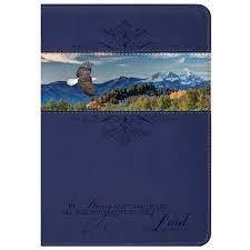 Bijbelhoes medium Blauw eagle
