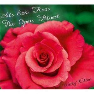 Als een roos die open bloeit